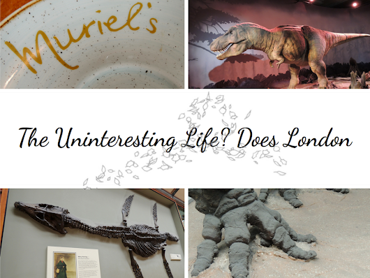 Life Travels | London Adventure: Brunch at Muriel's & The Natural History Museum