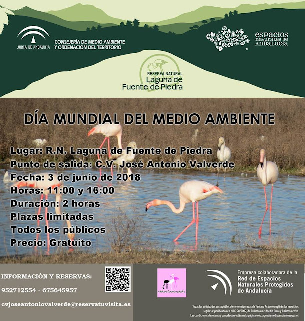 Día Mundial del Medio Ambiente en la Laguna de Fuente de Piedra