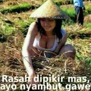 Gambar lucu Bahasa Jawa 2