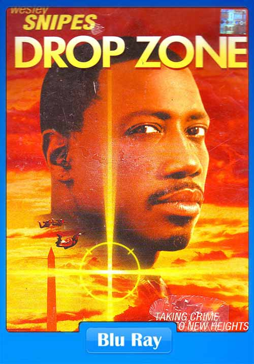 Drop Zone 1994 480p BRRip ESubs 300MB x264