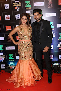 Bollywood Celebrities on the Red Carpet Of Zee Cine Awards 2017 Exclusive 037.JPG