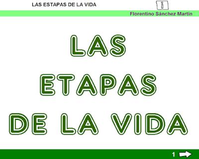 http://ceiploreto.es/sugerencias/cplosangeles.juntaextremadura.net/web/curso_3/naturales_3/etapas_vida_3/etapas_vida_3.html