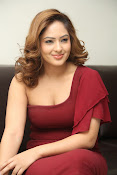 nikisha patel new sizzling photos gallery-thumbnail-12