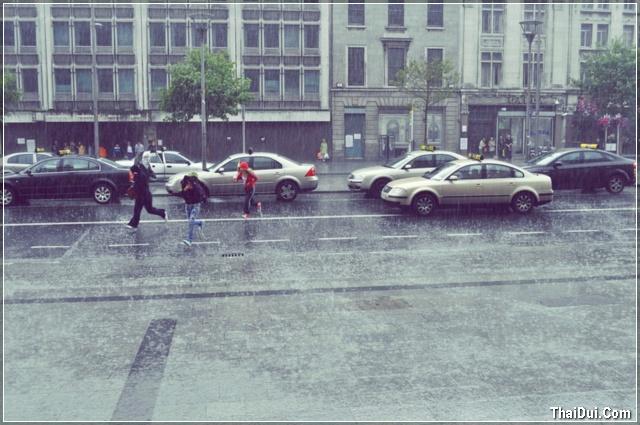 ảnh mưa ở đường phố