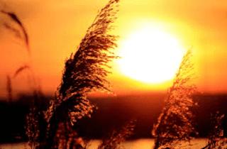 puisi keindahan waktu senja