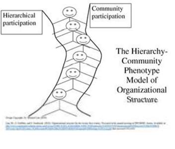 hirari organisasi
