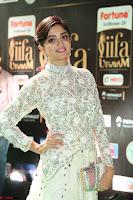 Poonam Kaur in Beautiful Floor Length Gown at IIFA Utsavam Awards 2017  Day 2  Exclusive 29.JPG