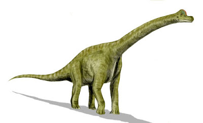 Brachiosaurus | facts | size