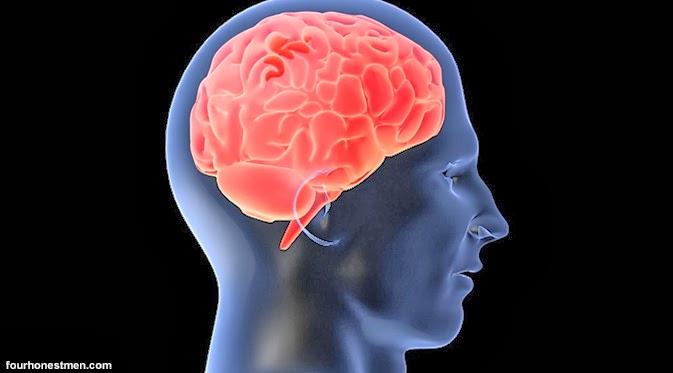 mengasah otak