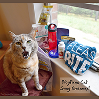 BlogPaws Cat Swag giveaway