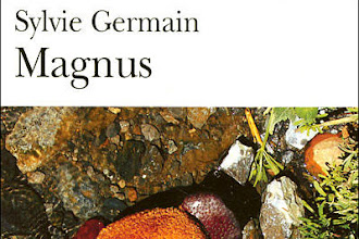 Lundi Librairie : Magnus - Sylvie Germain