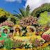 Temos de crescer qualitativa e quantitativamente na Festa da Flor