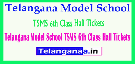 Telangana Model School TSMS 6th Class Hall Tickets 2018
