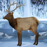 Games2rule Frozen Land Elk Rescue Walkthrough