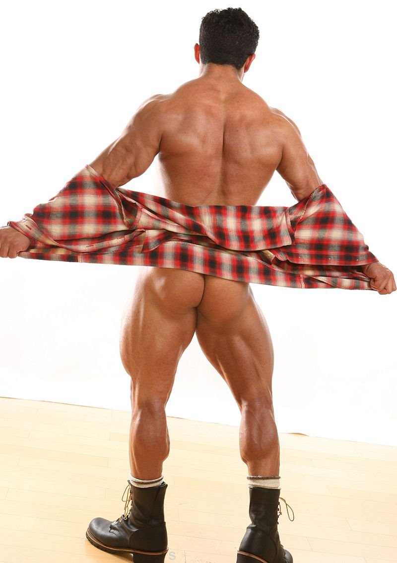 Zeb Atlas Ass 96