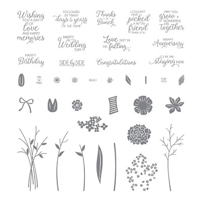 https://www.stampinup.com/ECWeb/product/143666/beautiful-bouquet-photopolymer-stamp-set?dbwsdemoid=2010774