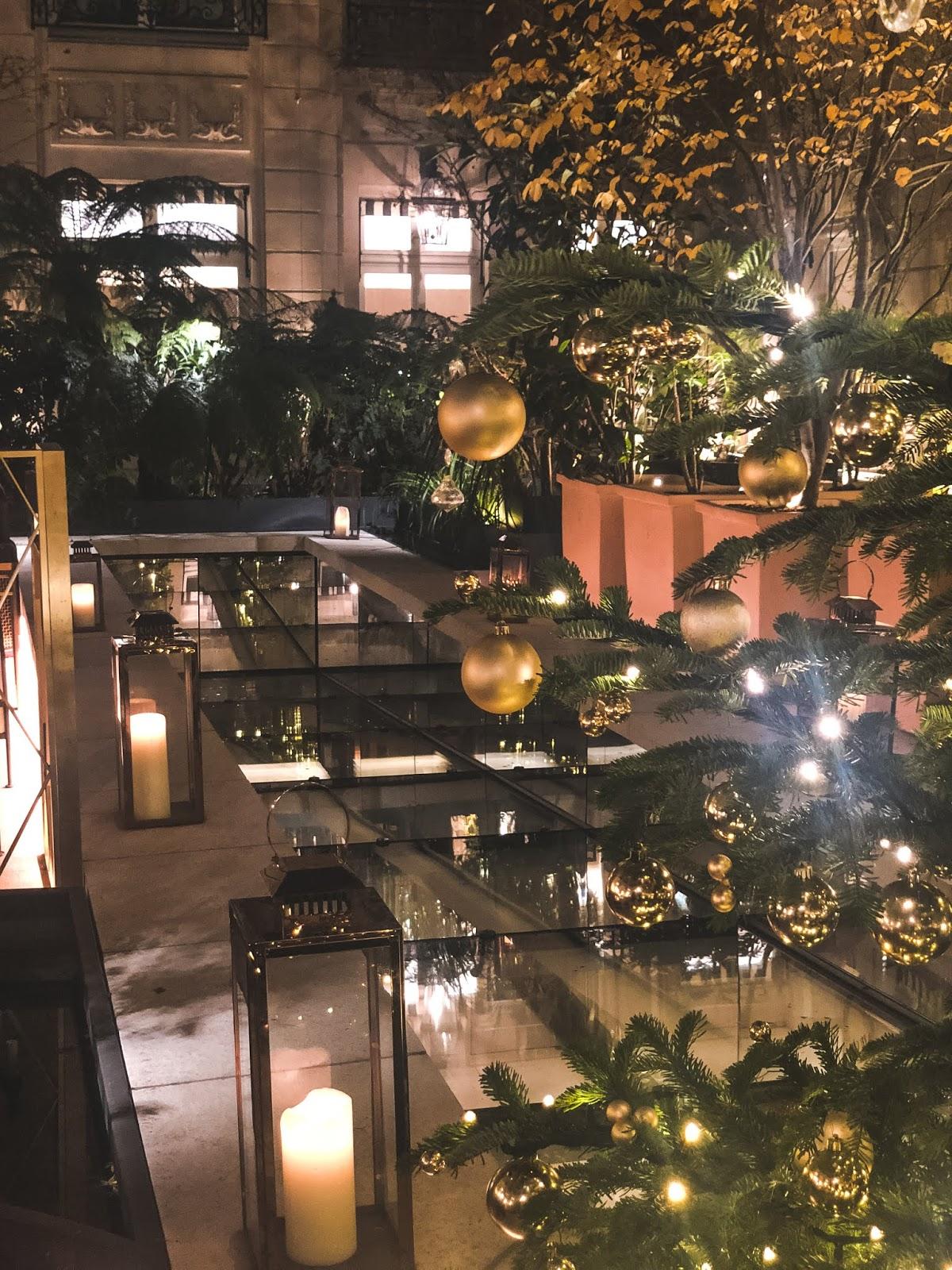 hôtel de Crillon jardin d'hiver
