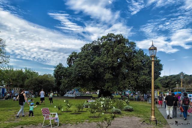 Paisaje de Recoleta,nubes,el gomero y gente
