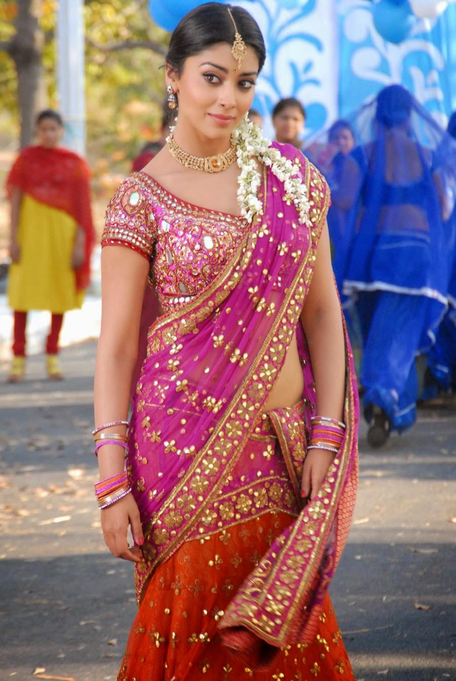 Shriya Saran Latest Saree Photos