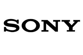 Sony vaio e series network controller