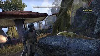 Argonian templar from Elder Scrolls Online besides a lizard