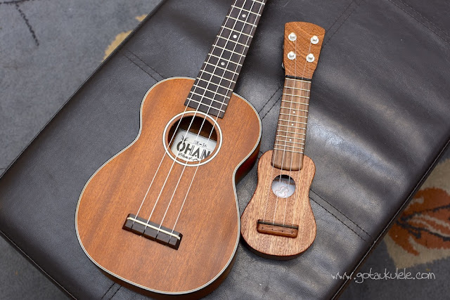 Andy's Ukuleles Nano size comparison