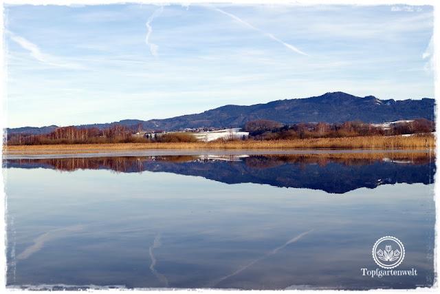 Gartenblog Topfgartenwelt Diana lernt Fotografieren Wallersee im Winter: fotografieren lernen