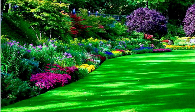 Flower Garden Wallpaper Or Background Important Wallpapers
