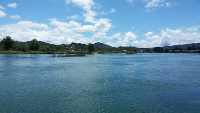 http://essenikanlele.blogspot.co.id/2017/07/resep-rahasia-umpan-ikan-tawes-paling.html