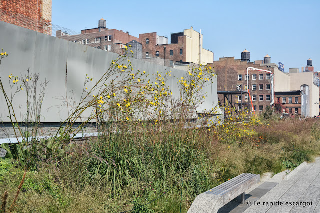 new-york-high-line