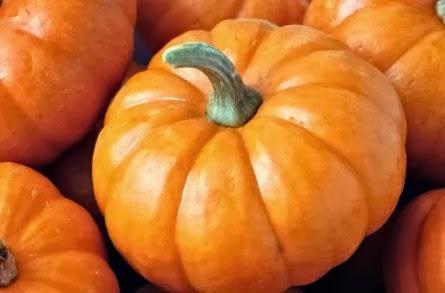 beta karoten yaitu pigmen lebih banyak didominasi pada sayuran dan buah Makanan-Makanan yang Mengandung Beta Karoten