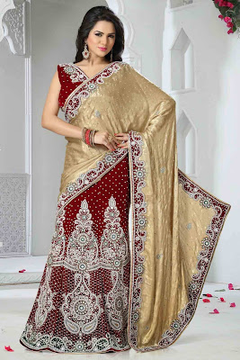 Latest Shimmer Sari design 2015