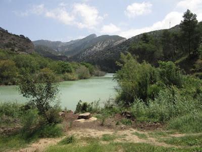 Senda forestal hacia la entrada. Caminito del Rey, Málaga