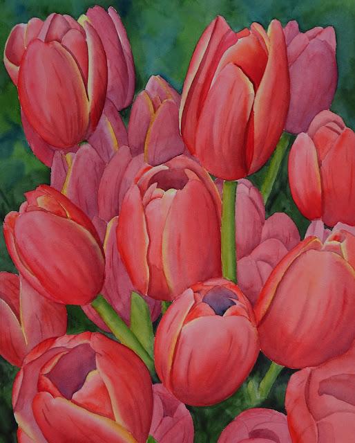 Danielle Beaulieu watercolour tulip