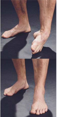 3 MOVES TO GREATER FEET STRENGTH