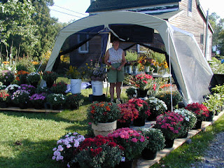 Flower Stand 2003