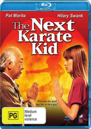 The Next Karate Kid 1994 BluRay 999MB Hindi Dual Audio 720p Watch Online Full Movie Download bolly4u