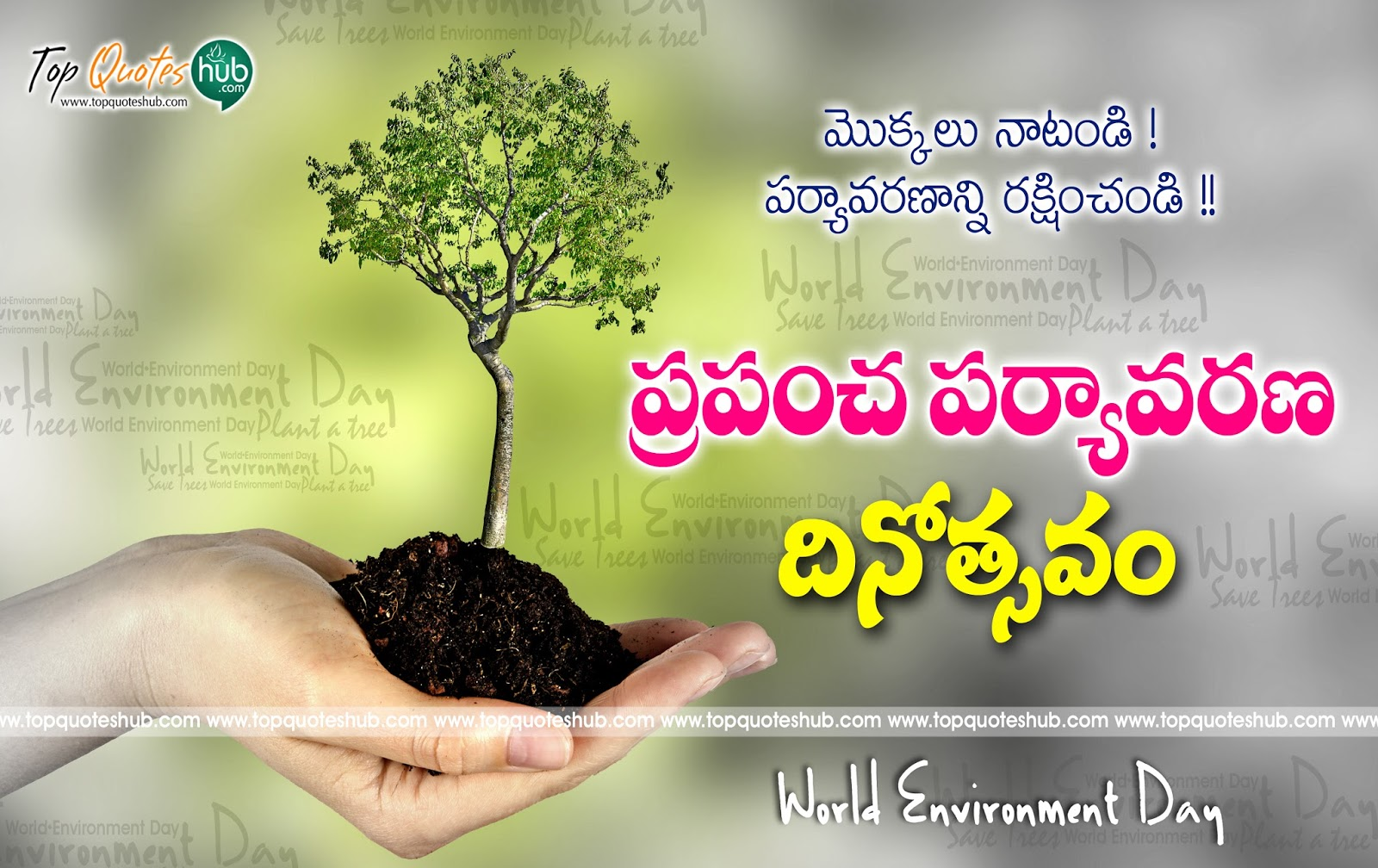 World Environment Day Telugu Poster And Quotes Hd Wallpapers