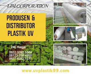 ketebalan plastik uv,lakban plastik uv,lem plastik uv,manfaat plastik uv untuk tanaman,pemasangan plastik uv,pengganti plastik uv,penjepit plastik uv,plastik anti uv,plastik uv adalah,plastik uv bandung,plastik uv bogor,plastik uv eceran,plastik uv greenhouse,plastik uv hidroponik,plastik uv jakarta,plastik uv jogja,plastik uv kaskus,plastik uv lebar 6 meter,plastik uv malang,plastik uv murah,plastik uv surabaya,plastik uv sidoarjo,plastik uv untuk greenhouse,plastik uv untuk hidroponik,plastik uv untuk kolam ikan,toko plastik uv di bandung