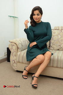 Actress Aparna Bajpai Latest Pictures in Green Dress  0098.JPG