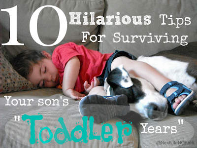"10 #Hilarious Tips For Surviving ""The Toddler Years"" - Next Life, NO Kids"