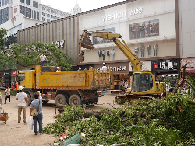 removing debris on the Lianhua Road Pedestrian street after Typhoon Hato