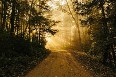 Trouver la lumière au bout du chemin : décoder votre prénom pour vous déprogrammer
