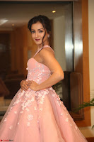 Catherine Tressa looks super cute in strapless sleeveless deep short dress at 64th Jio Filmfare Awards South ~  Exclusive 181.JPG