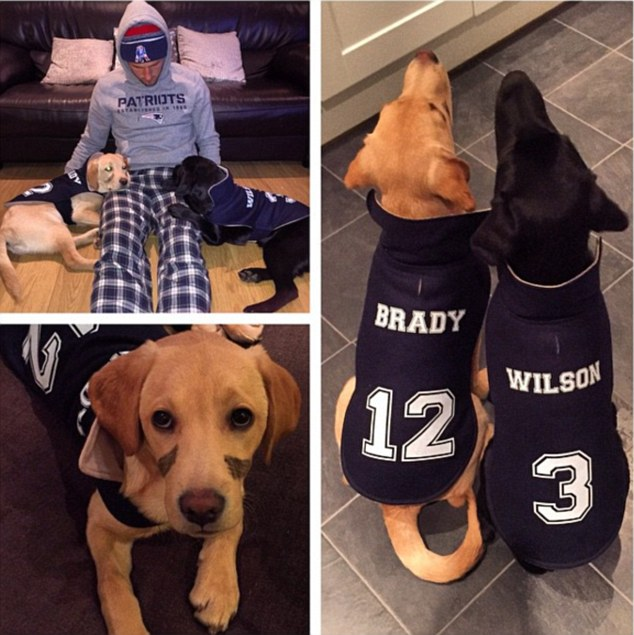 Harry Kane Kane has two Labradors, Brady and Wilson.