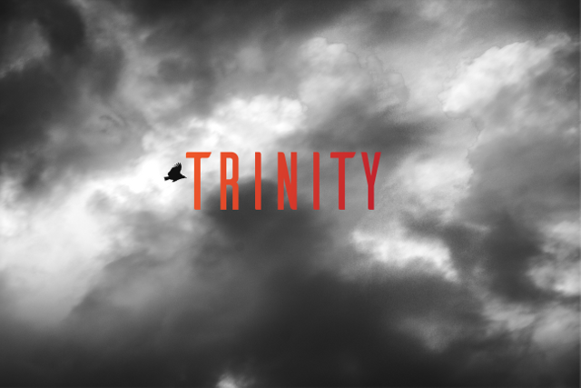 image of a bird flying in the sky with the word trinity on it.