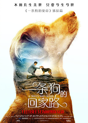 A Dogs Way Home Movie Poster 7