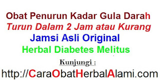 Obat diabetes herbal alami+pantangan dan anjuran makanan terbaiknya