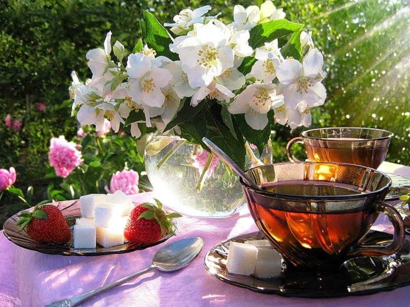 good-morning-lime-flower-and-tea