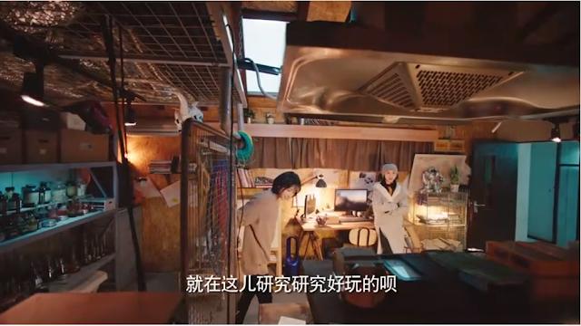 Zheng Shuang Body Double Yan Yan